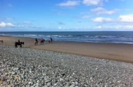 gallery-beach1