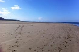 gallery-beach2